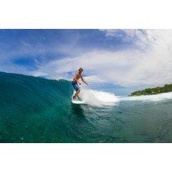 Torq Surfboard 8'0 Longboard- Blue Pinline